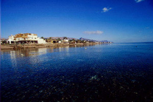 Dahab photo Inmo Divers 1